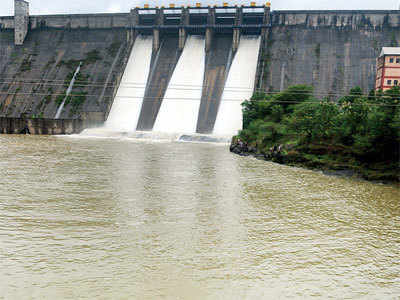 Activist protests painting, repair of dams near Pune