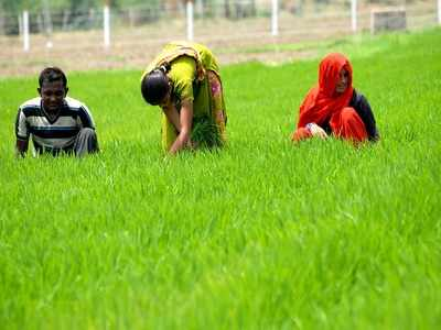 Gandhinagar farmers to get more compensation for land acquired by NHAI