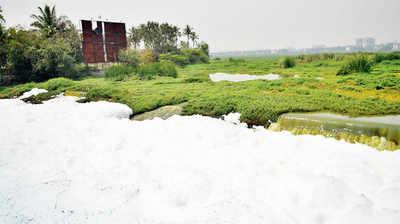 As Bellandur Lake clean-up begins, Varthur too demands attention