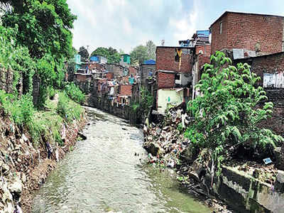Failing to timely fell 300 trees leads to floods