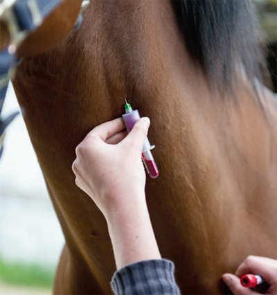 New twist in Queen Latifa doping case