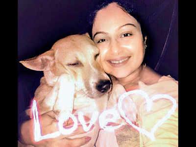 Actor Ayesha Jhulka files case against caretaker over pet's death
