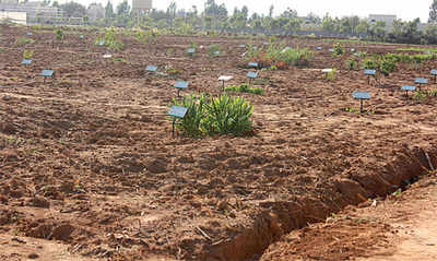 City gets South India's first genetic garden