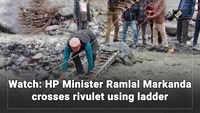 Watch: HP Minister Ramlal Markanda crosses rivulet using ladder