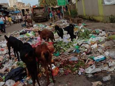 Oshiwara: Teachers, students of OES International School clear garbage from school vicinity