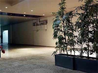 Vibrantly fake: Over 300 artificial plants dot Gandhinagar's newly-renovated Vidhan Sabha building