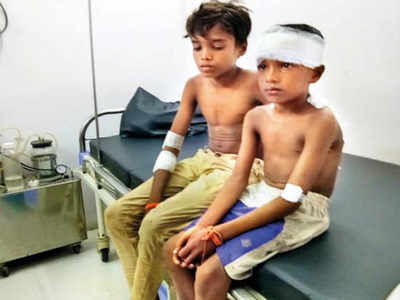 14-year-old Thane boy fights off leopard, saves 7-year-old cousin