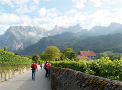 Travel: Rooting for Heidi