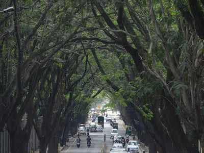 #BengaluruSpeaks: Residents react to BBMP's plan to install 6 air purifiers