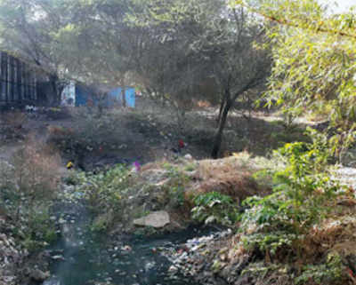Locals pollute Ramnadi's lifeline