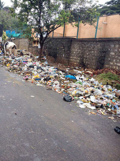 While namma city stinks, Delhi taps Bengaluru's talent for a garbage app