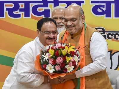 Amit Shah to remain BJP chief, JP Nadda made Working President