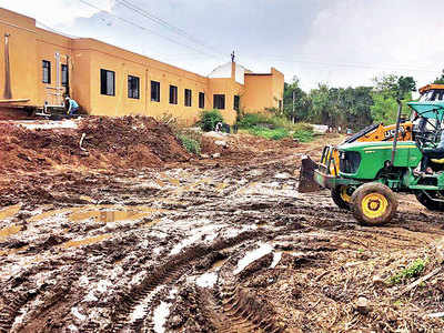 NGT directs fresh tests on polluted Pachane farmland