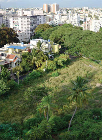 Another land scam in making: Dead man gets plot converted