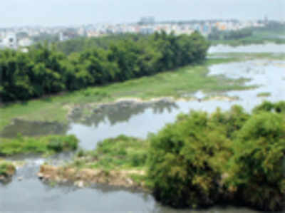 BWSSB chief gets notice over pollution of lakes