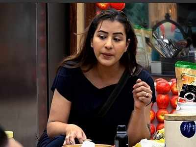 Bigg Boss 11 Live Updates, Today's Full Episode, Day 99, 8 January 2018: Shilpa Shinde thanks Puneesh Sharma for his support, calls Vikas Gupta a liar; HIna Khan applauds her ingenuity
