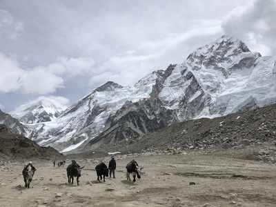 Mumbai-based climber Anjali Kulkarni dies due to 'traffic jam' on Mount Everest