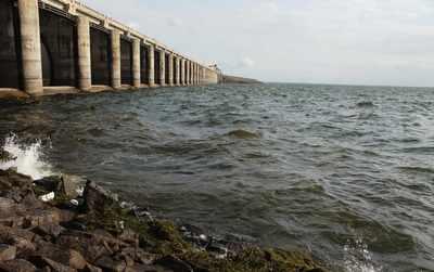 Maharashtra: Water stock in dams rises to 60 pc of total capacity