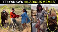 Priyanka Chopra shares hilarious memes of US politician