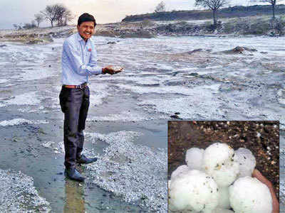 Hailstorm kills 2, damages crops in parts of state