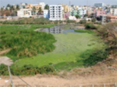 Uttarahalli residents form a trust to save Yelachenahalli lake from decay