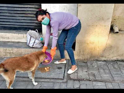Animal lovers struggle to feed pets, strays as sources closed