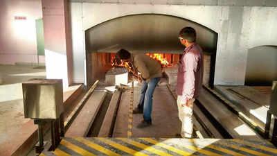 Weak infrastructure puts Bengaluru's pet crematorium in the doghouse