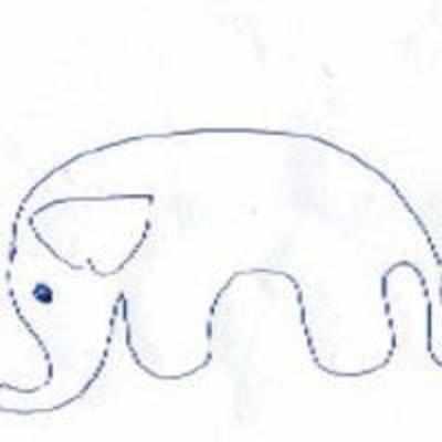 Yankee's Doodle