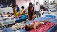 Why are children dying in Bihar?