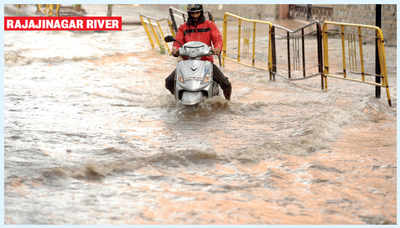 By the rivers of Bengaluru