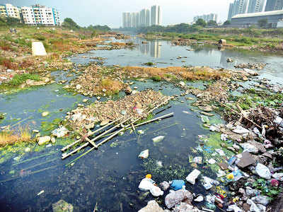Tendering issues may delay river clean-up