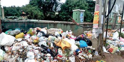 Garbage problem at Tin Factory Road