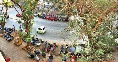 'Errant bikers create a nuisance every Sunday'