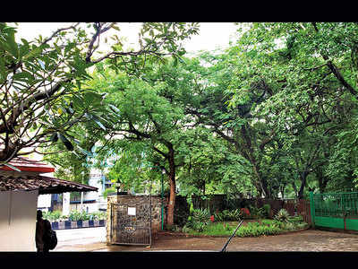 Do you support Poona Club's move to axe 78 trees on its premises for a new building?