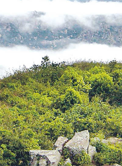 Super news for trekkers: Skandagiri to be made accessible