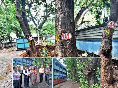 Akashvani staff relive their tree stories as 22 are fated to face