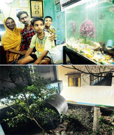 Miracle! Boy found in tank after 3 days