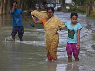 Assam flood: Death toll reaches 37; tiger rescued from a house after fleeing flooded Kaziranga