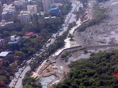 Bandra-Versova Sea Link's Carter Road connector spells death for community space