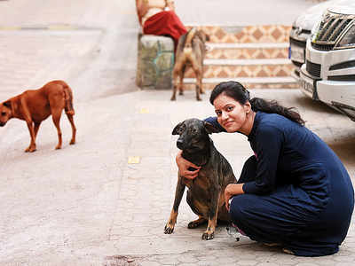 Kandivali society levies fine of Rs 2,500 per day for feeding stray dogs