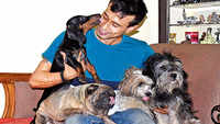 Dad's the way for their pooch lovers in Lucknow