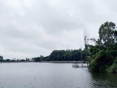 Malleswaram Mirror Special: Around Town: Greener Sankey in the works