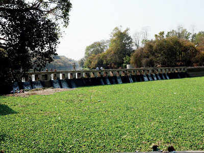 PCMC penalised over pollution in Pavana