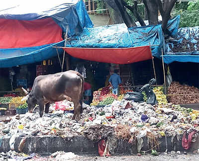 BBMP needs to clean up its act in Madiwala