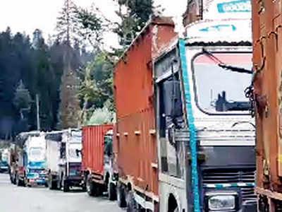 Apple growers live in fear in Kashmir