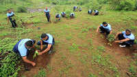 Pune: 1,200 saplings planted in mega plantation drive