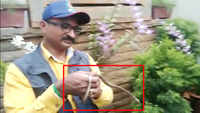 On cam: Snake rescued from Karnataka home minister's residence