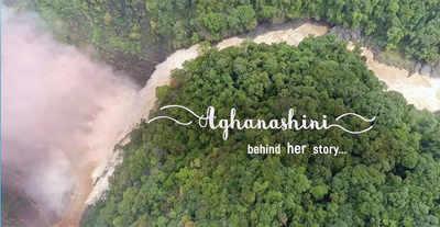 Aghanashini: A unique river