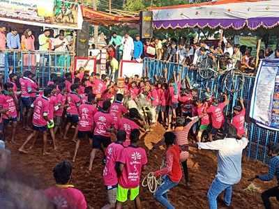 At least 50 participants injured as Jallikattu begins in Tamil Nadu