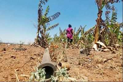 Karnataka under dry spell: Gets hit by worst drought in 46 yrs